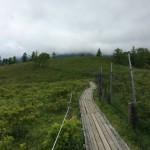 甘利山登山 お気軽ハイキングにピッタリの山